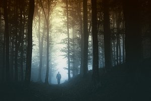 Man in mysterious forest with fog