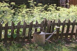 Stock photo: Garden works