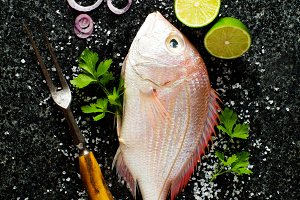 Fish Background with ingredients