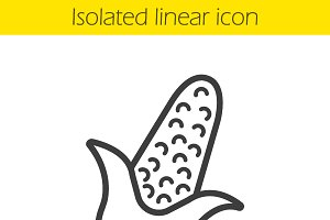Corn linear icon. Vector