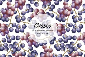 Set of watercolor grapes