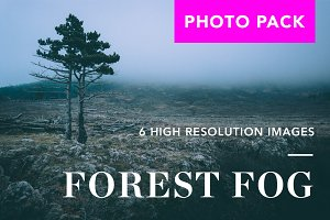 FOREST FOG photo pack - 50% OFF!