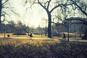 Sunny spring morning. Riga