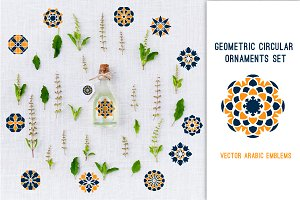Geometric circular ornaments set