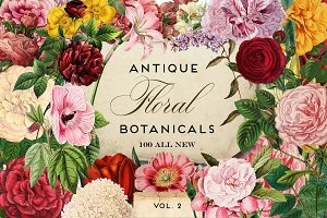 Antique Botanical Floral Graphics 2
