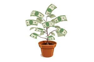 Money Tree with dollars in pot.