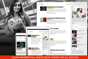 Modern Fluid WordPress Blog Theme