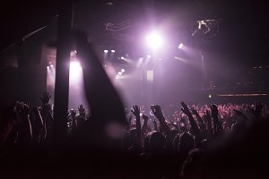 Crowd Hands at Concert
