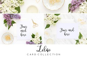 Card styled stock BUNDLE