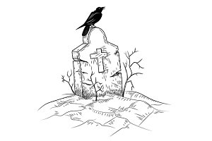 Vector of Crow on the Grave