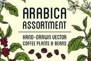Arabica Assortment