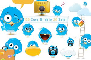 100 Cute Birds Collection