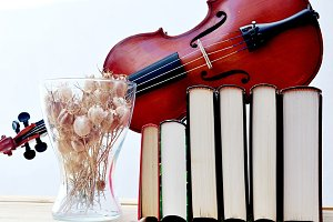 vase, violin and books