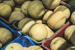 Melons on the market