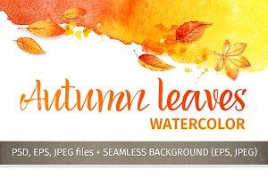 Autumn leaves. Watercolor