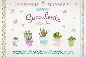 Succulents watercolor set