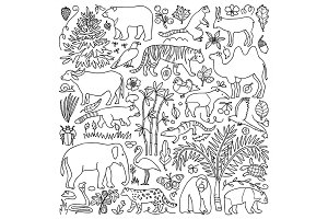 Asia Nature Set + Seamless Pattern