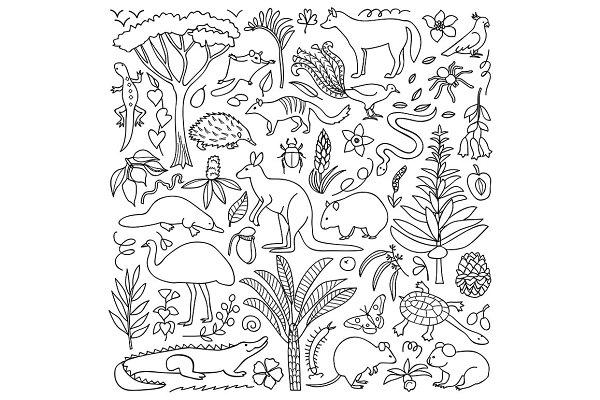 Australia Nature + Seamless Pattern