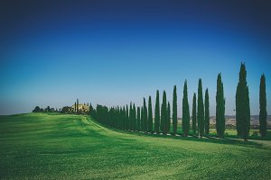 Tuscany typical landscape