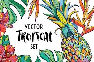 Vector tropical set
