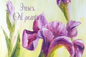 Irises, oil painting on canvas