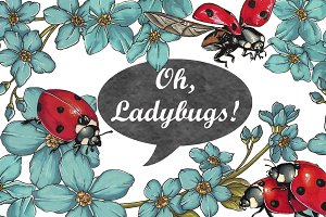 Oh, Ladybugs!...(marker collection)