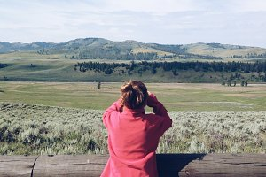 Spotting Bison at Lamar Valley