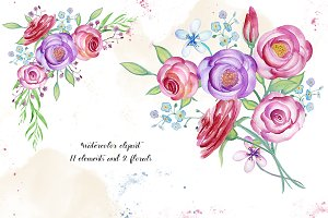 Watercolor flower elements, roses