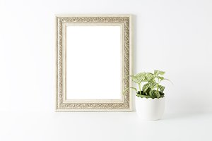 Empty picture decorated with plant