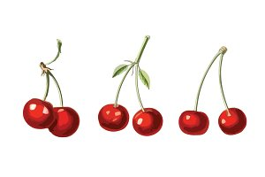 3 Vector Cherry Illustrations