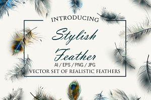 Vector realistic feathers set