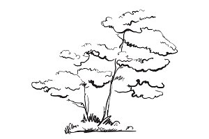 Hand drawn doodles tree.