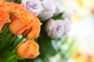 Bouquet of red and orange roses