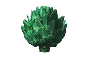 Vector Artichoke Illustration