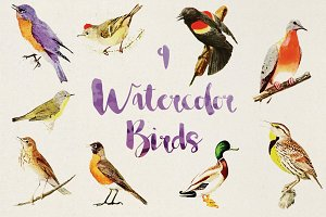 9 Vector Watercolor Birds