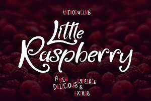 Little Raspberry Typeface+Extras