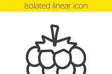 Raspberry linear icon. Vector