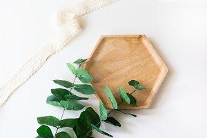 Eucalyptus Styled Stock Image