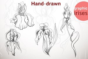 Hand-drawn graphic irises
