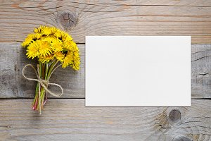 Dandelion flowers and blank card