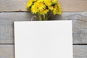 Dandelion flowers and blank postcard