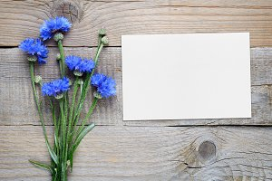 Cornflowers and blank card