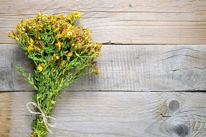 Hypericum on wooden background