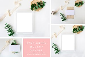 Eucalyptus Stock Image Bundle