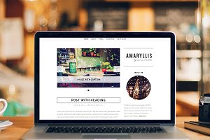 Amaryllis Theme