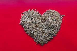 heart of the millet