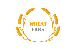 Wheat Ears Concept