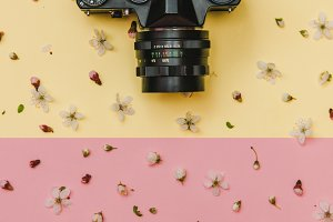 vintage camera and flowers