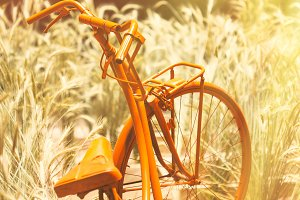 Old bicycle decoration