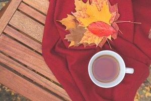 Fall tea XS